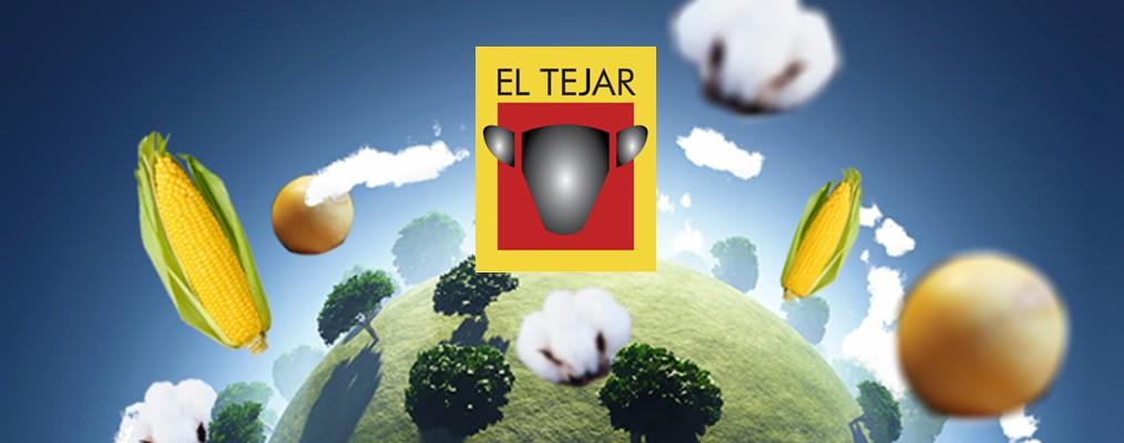 El Tejar migra su Datacenter a Azure