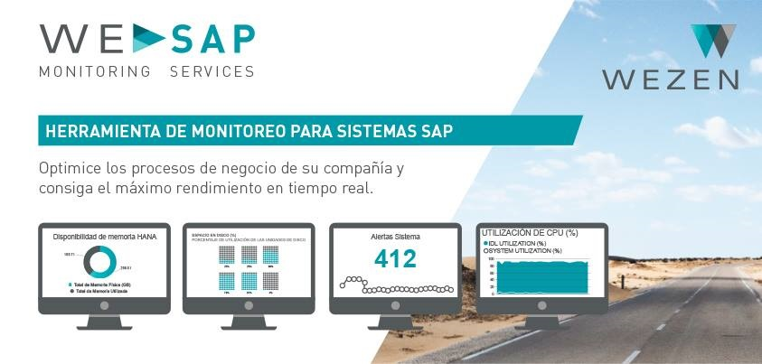 We SAP Monitoring Services