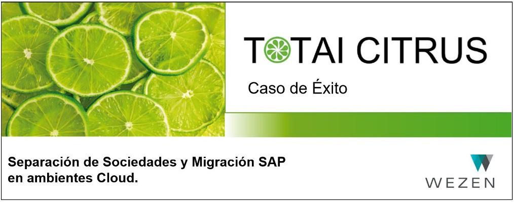Separación de Sociedades y Migración SAP en ambientes Cloud.
