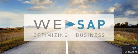 Expertos en Optimización de SAP